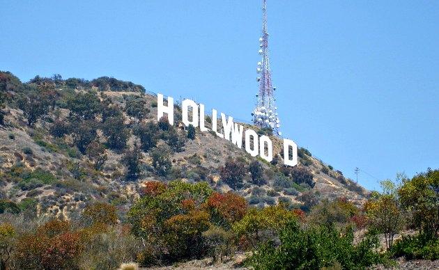 Los Angeles Hollywood Sign Dog Park
