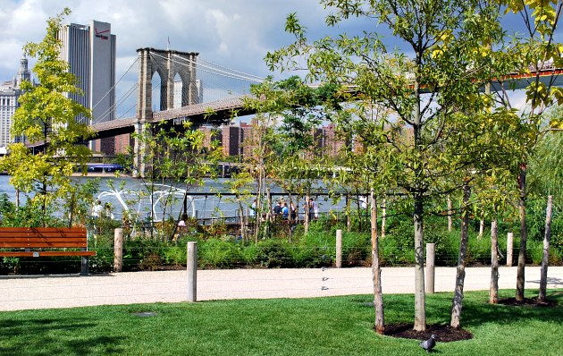 New York Brooklyn Bridge Park View