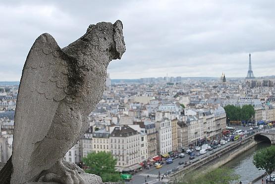 Paris Notre Dame tower view (www.free-city-guides.com)