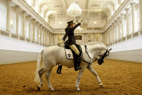 Vienna Spanish Riding School demonstration