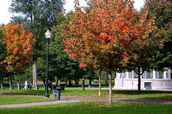 Boston Common in the fall (www.free-city-guides.com)