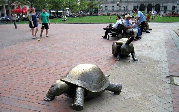Boston Copley Square Tortoise and Hare