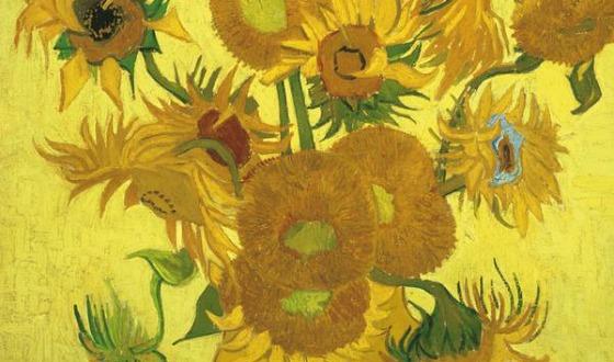 Amsterdam Van Gogh Sunflowers