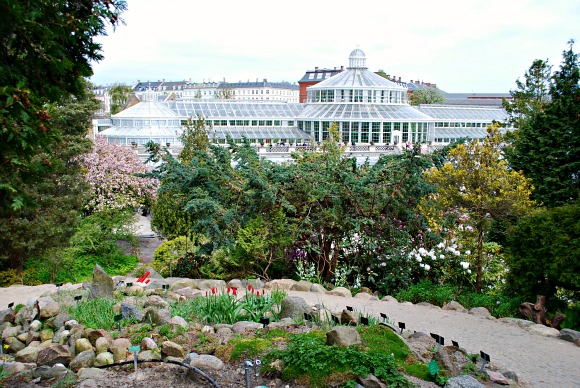 Botanical Gardens, Copenhagen , Greenhouses \u0026 Sightseeing