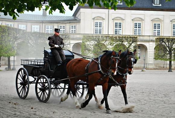 Copenhagen Slotsholmen horses (www.free-city-guides.com)