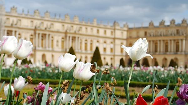 Paris Versailles flowers (www.free-city-guides.com)