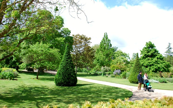 Oxford Botanic Garden trees (www.free-city-guides.com)
