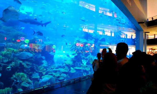 Dubai Aquarium External