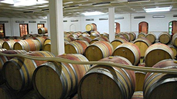 Cape Town Wine Tours Barrels