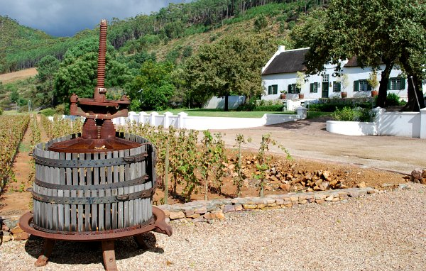 Cape Town Wine Tours winery