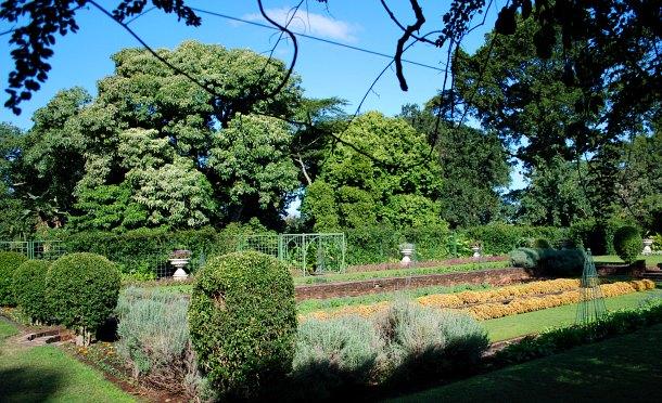 Durban Botanic Garden formal planting