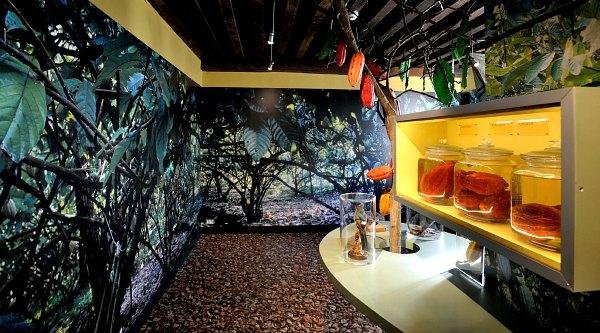 Bruges Choco Story Museum display