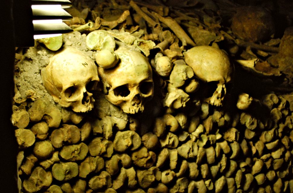Paris Catacombs Skulls New